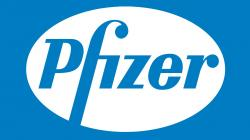 https://pfizer.wd1.myworkdayjobs.com/PfizerCareers/0/refreshFacet/318c8bb6f553100021d223d9780d30be